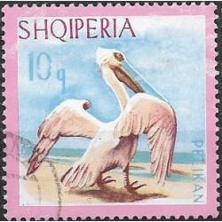 1138.- Albanie, vodní ptactvo,o,