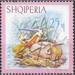 1140.- Albanie, vodní ptactvo,o,
