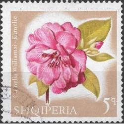 1143.- Albanie, květiny,