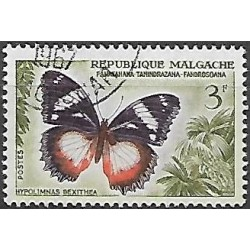 449.- motýli,o,