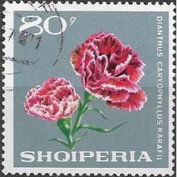 1251.- Albanie karafiát,o,