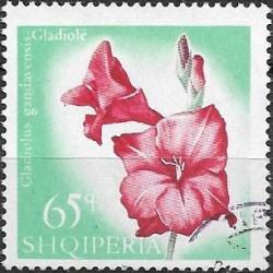 1148.- Albanie, květiny,,o,