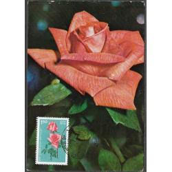 1008.- Indie, růže 1984,/*/,
