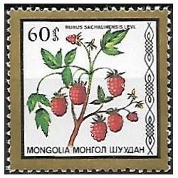 1881.-  flóra- maliny,**,