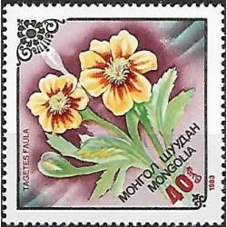 1562.-  flóra- květiny,**,