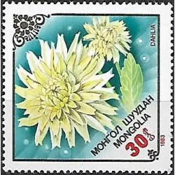 1561.-  flóra- květiny,**,
