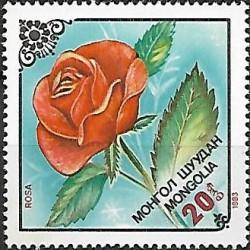 1560.-  flóra- květiny,**,