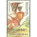 366- Akvarijní rybičky,**,