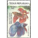 365- Akvarijní rybičky,**,