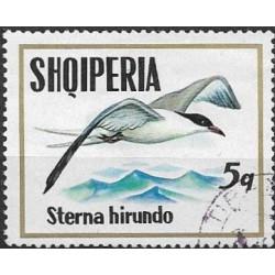 1620.- Albanie- ptactvo ,o,