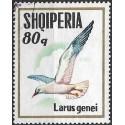 1624.- Albanie- ptactvo ,o,