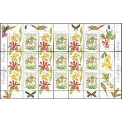 745.,PL, Gratulační motiv- Orchideje,**,