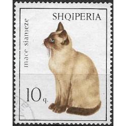 1091.- kočky,o,
