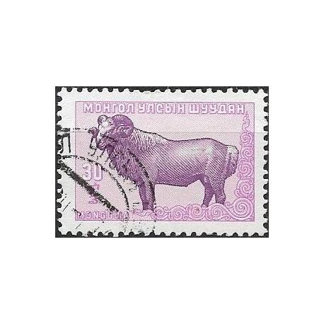 143-  Fauna ,o,