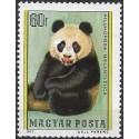 3244.- Panda velká,**,