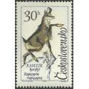 1347.- Zvířena, Kamzík horský,**,