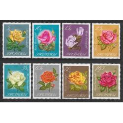 1153.- Albanie, květiny,o,