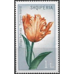 1478.- Albánie-  tulipány,**,