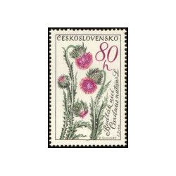 1378.- Flóra- květiny- Bodlák nicí,**,