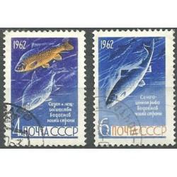 2640- 2641./2/, ryby ,o,