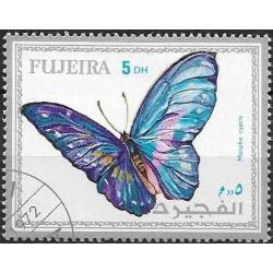 """1160.- motýli ,o"""","""