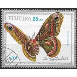 """1164.- motýli ,o"""","""