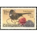 1478.- Horské ptactvo,**,