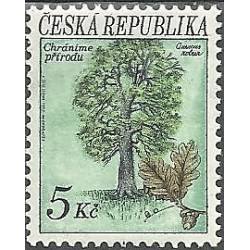 23.- Ochrana přírody - stromy,**,