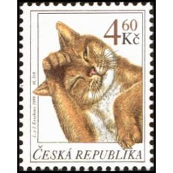 205.- Chovatelství- kočky,**