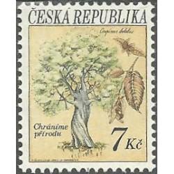 24.- Ochrana přírody - stromy,**,