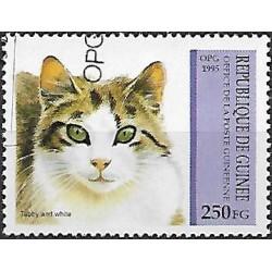 1516.- kočky ,o,