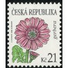 550. Krása květů- Gerbera,**,