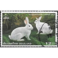 1934.-  fauna- králíci,o,