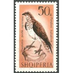 1128.- fauna- ptactvo,o,
