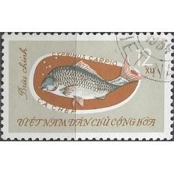 271.- ryby,o,