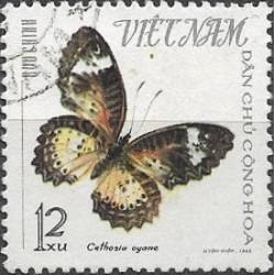 405.- motýli ,o,