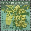 111.- flóra- banán,o,