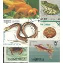 Ryby, obojživelníci, hadi