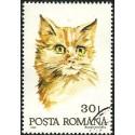 Rumunsko, Romana,o,